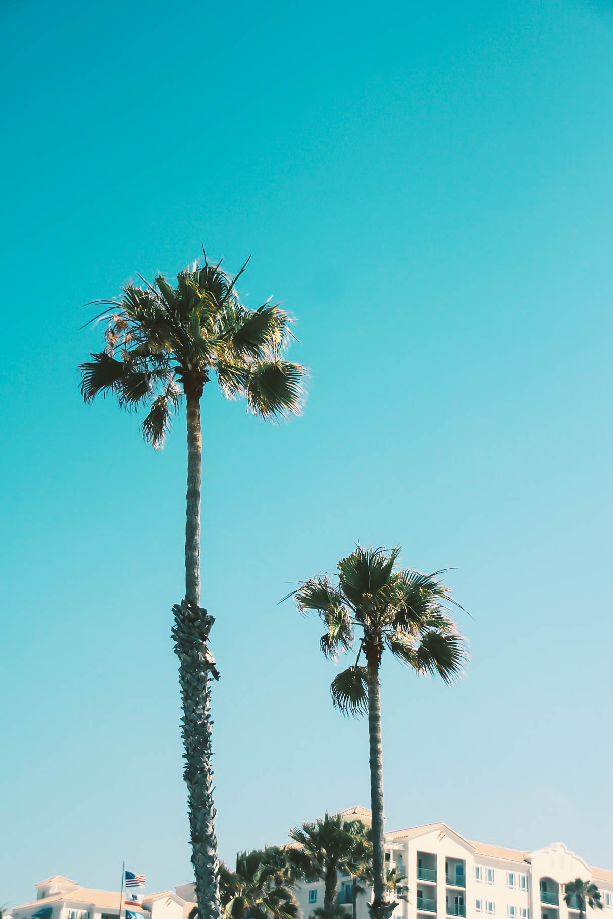 Lace & Lilacs » A Local\'s Guide to Oceanside, California